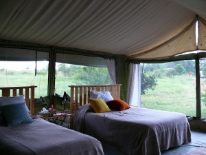 Kenya - Eco-luxe voluntourism