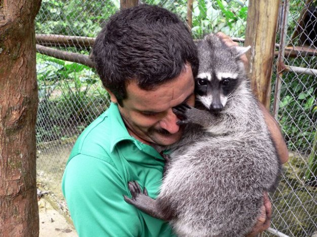 Help to conserve wildlife by volunteering at a rescue shelter.