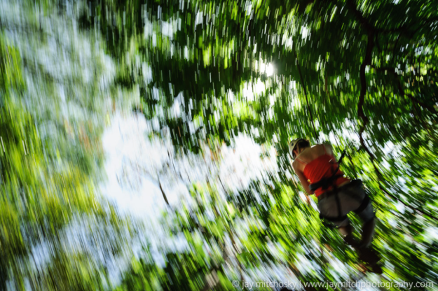 Zipline through forest canopies. Photo credit: Jay Mitchosky on 500px.com
